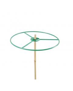 Plantenring Ø 30 cm